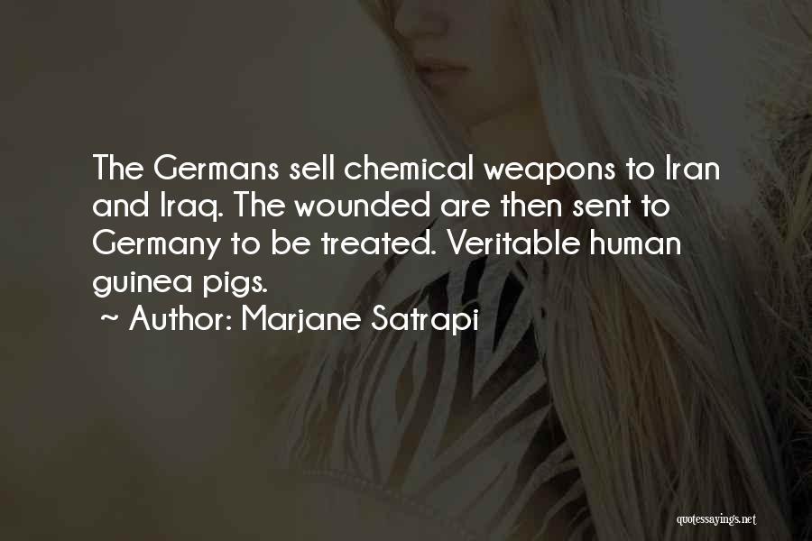 Top 8 Persepolis Marjane Quotes Sayings