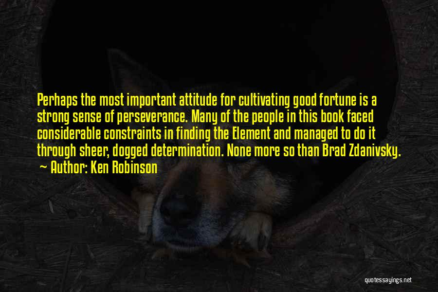 Perseverance And Determination Quotes By Ken Robinson