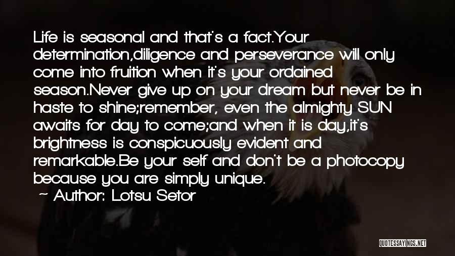 Perseverance And Determination Quotes By Lotsu Setor