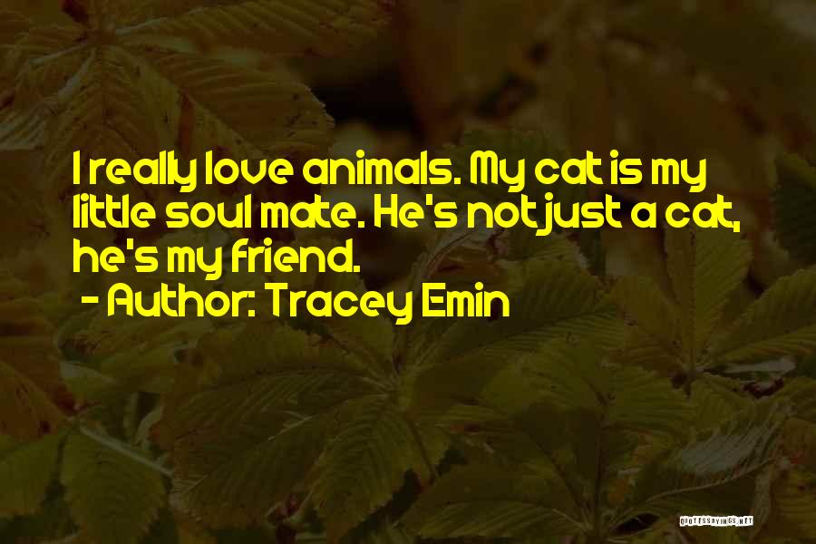Pet Love Quotes By Tracey Emin