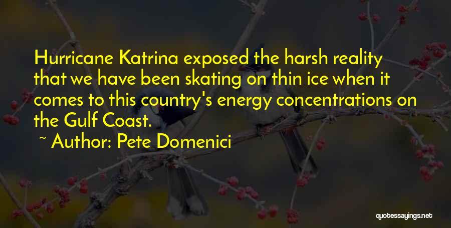 Pete Domenici Quotes 1632659