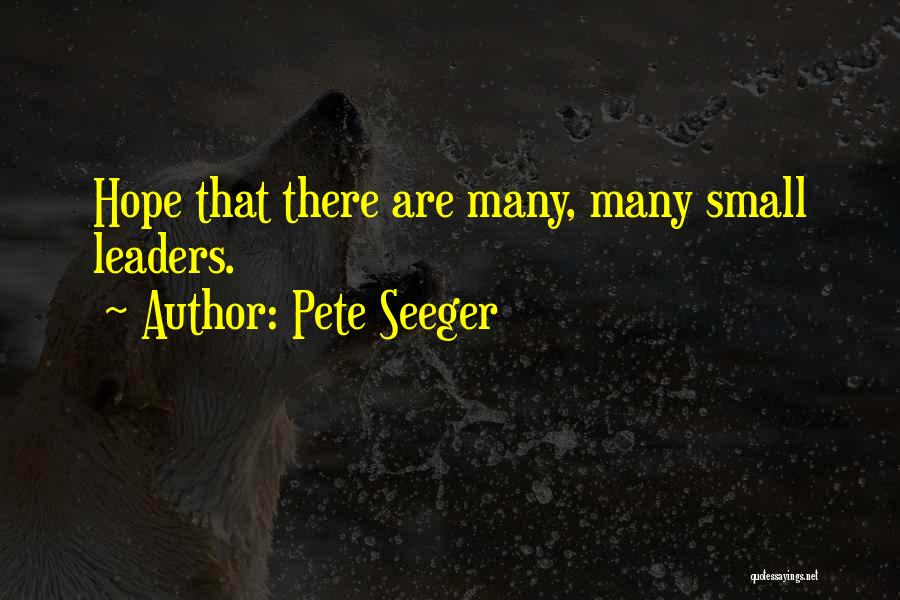 Pete Seeger Quotes 1574973