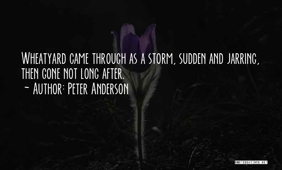 Peter Anderson Quotes 383803