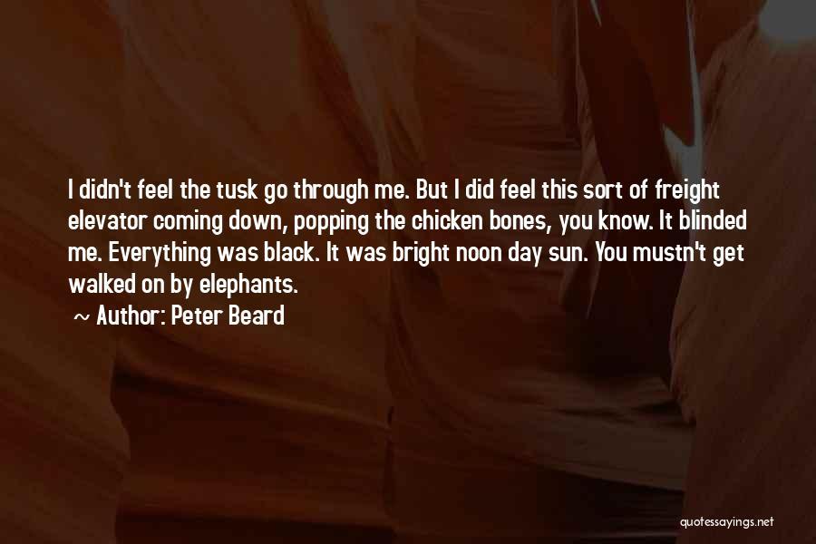 Peter Beard Quotes 1071738