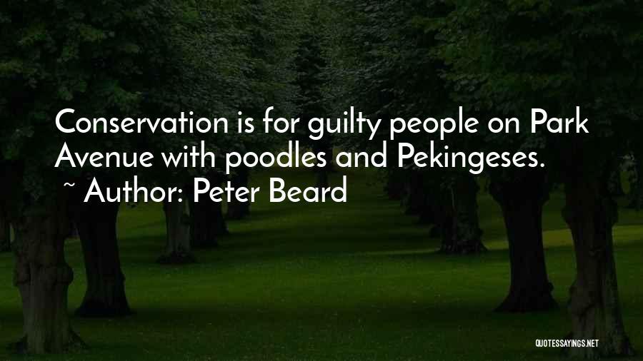 Peter Beard Quotes 1527096