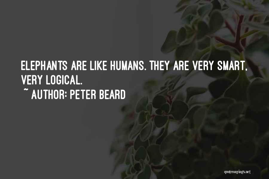 Peter Beard Quotes 326182