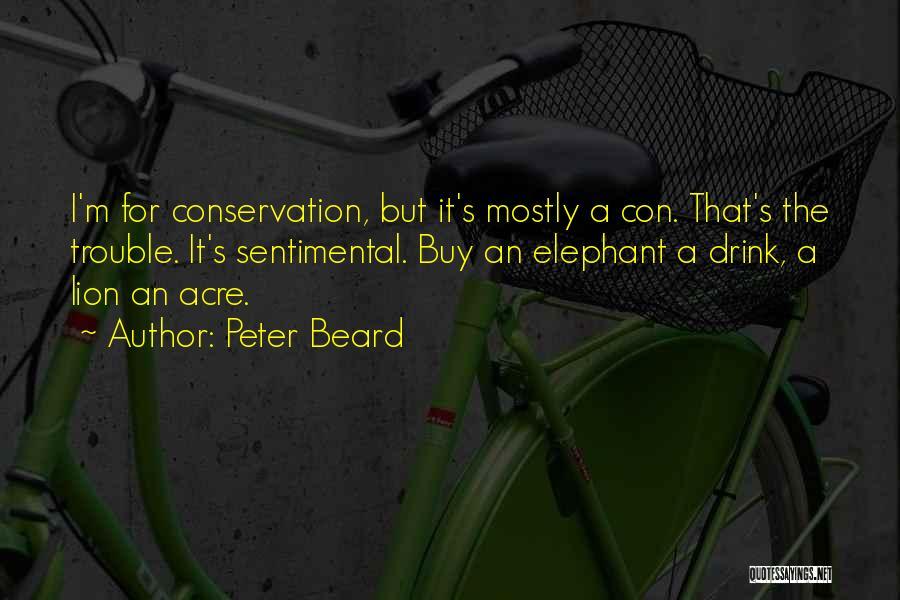 Peter Beard Quotes 461337