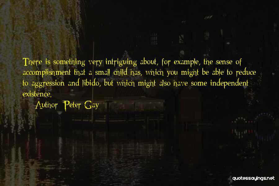 Peter Gay Quotes 351539