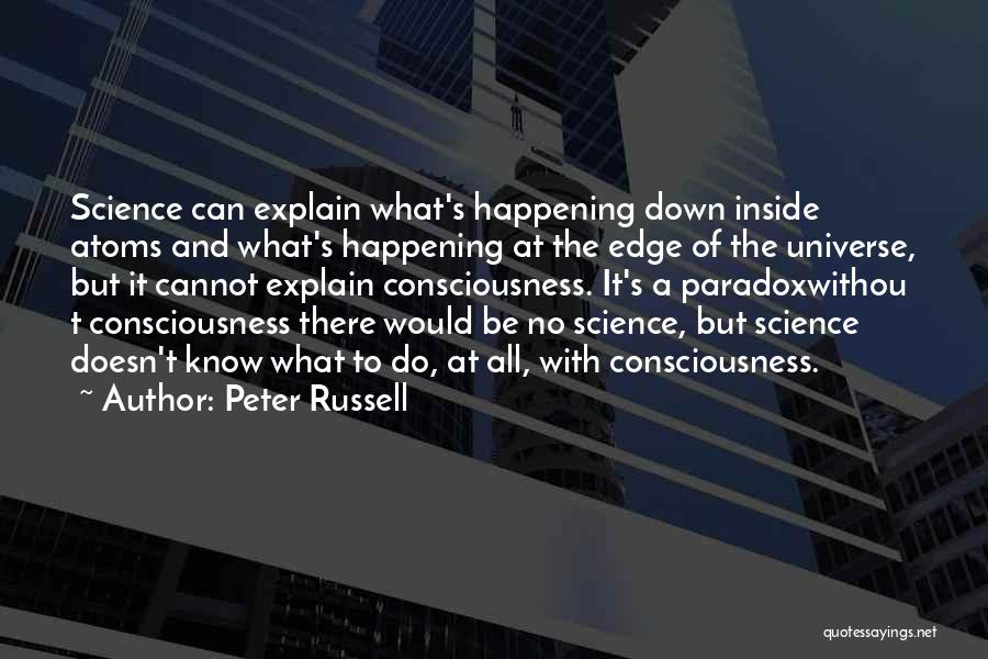 Peter Russell Quotes 529225