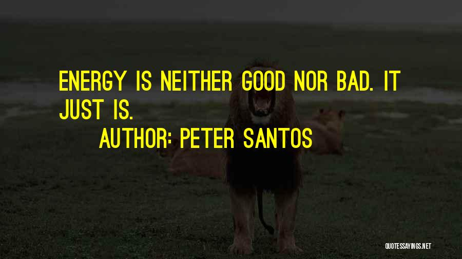 Peter Santos Quotes 1125603
