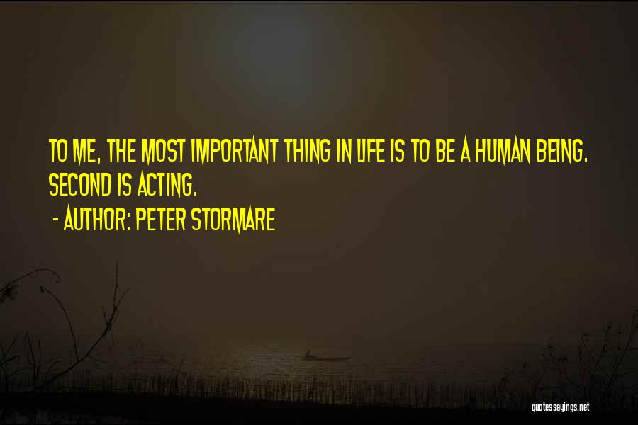 Peter Stormare Quotes 1603594