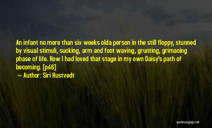 Phase Of Life Quotes By Siri Hustvedt