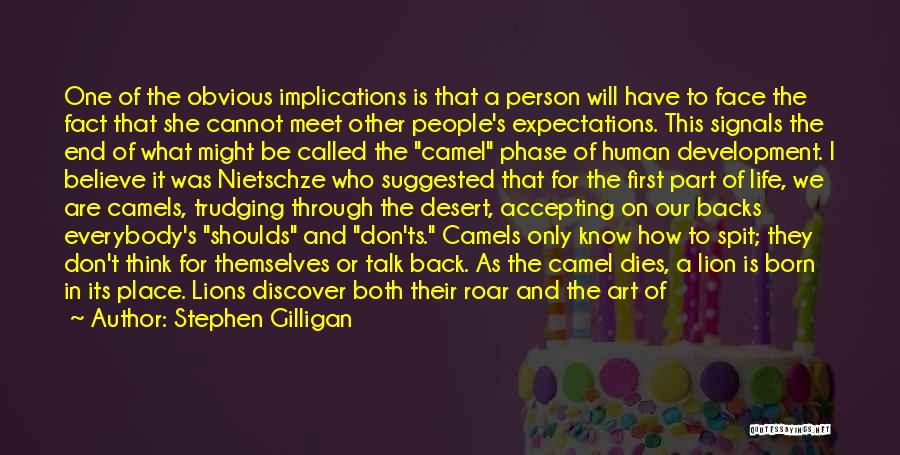 Phase Of Life Quotes By Stephen Gilligan
