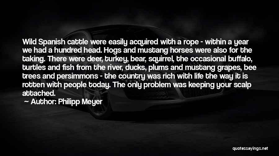 Philipp Meyer Quotes 2200719