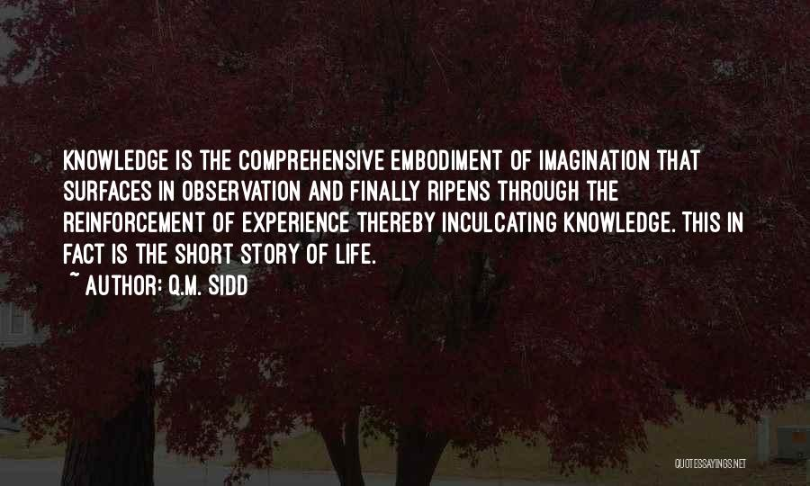 Philosophy In Life Short Quotes By Q.M. Sidd