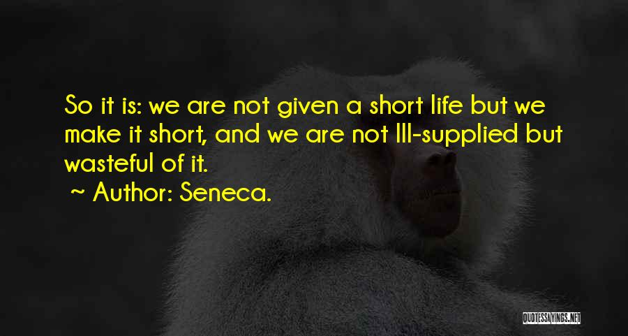 Philosophy In Life Short Quotes By Seneca.