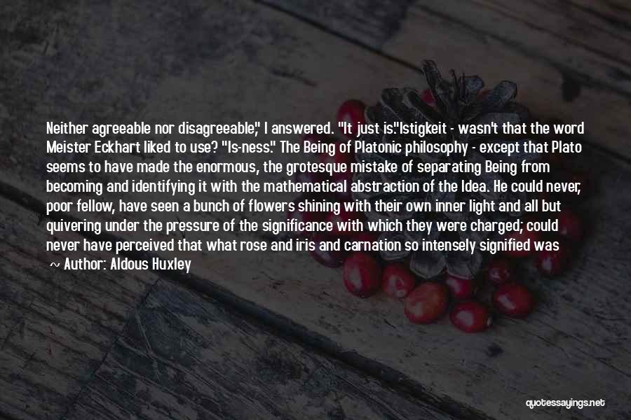 Philosophy Plato Quotes By Aldous Huxley