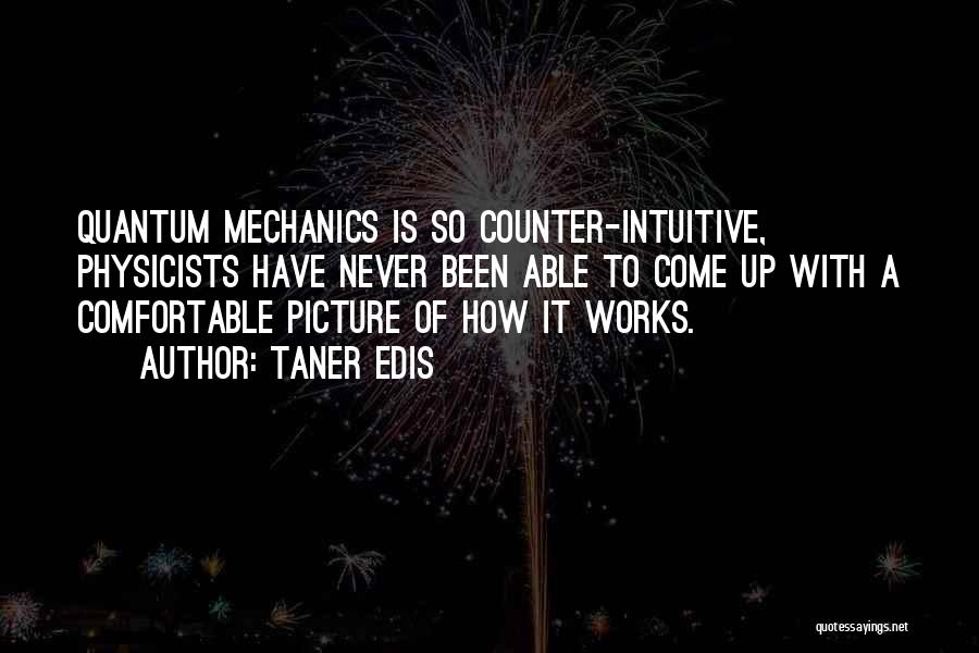Physicists Quotes By Taner Edis
