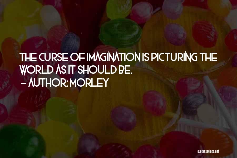 Picturing The World Quotes By Morley