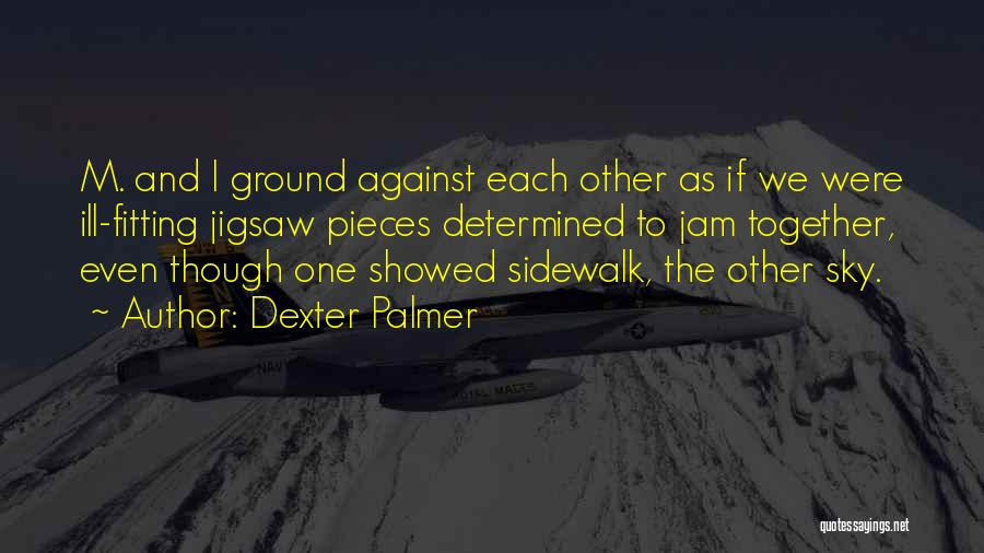 Pieces Fitting Together Quotes By Dexter Palmer