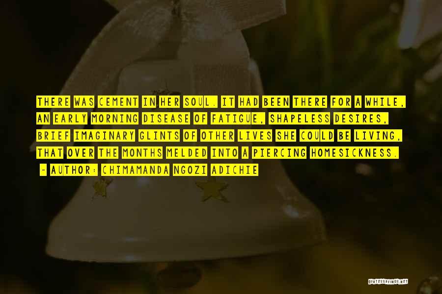 Piercing Quotes By Chimamanda Ngozi Adichie