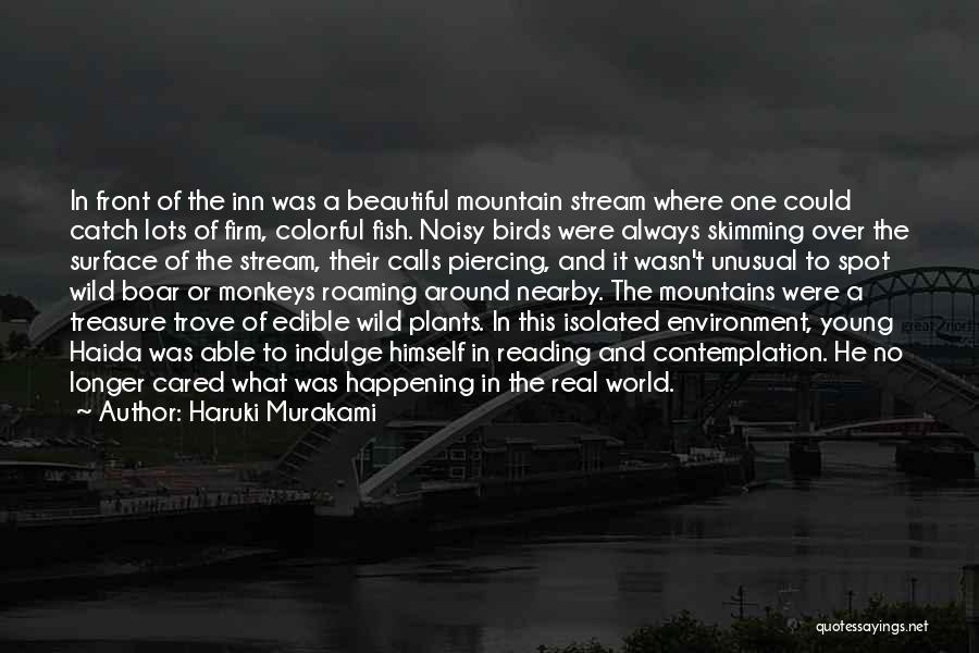 Piercing Quotes By Haruki Murakami