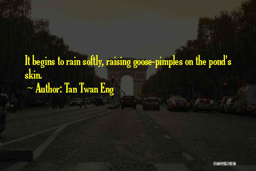Pimples Quotes By Tan Twan Eng