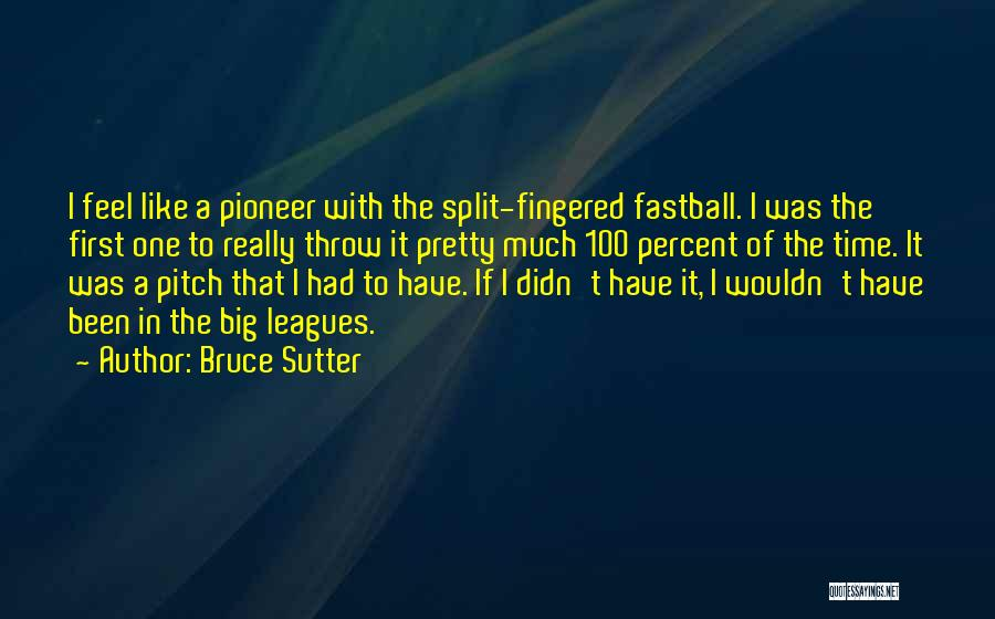 Pitch Quotes By Bruce Sutter