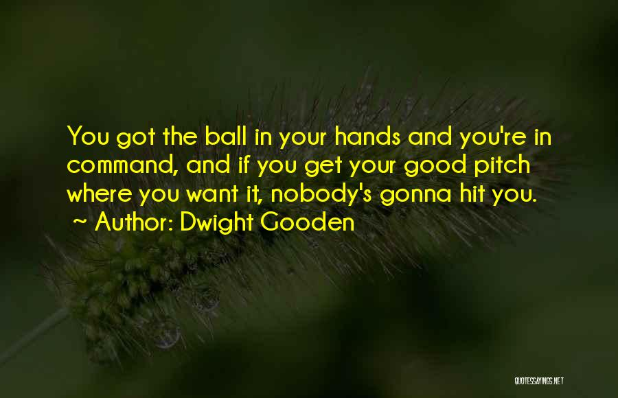 Pitch Quotes By Dwight Gooden