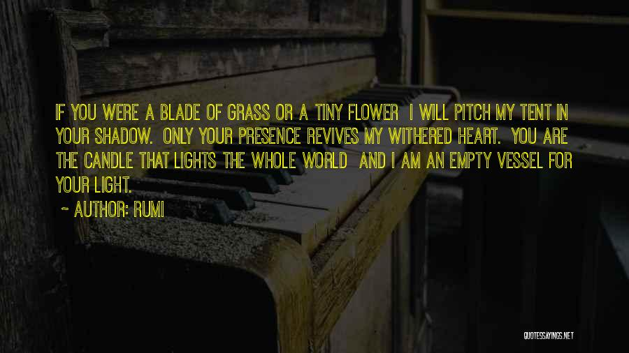 Pitch Quotes By Rumi