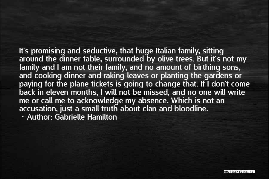 Plane Tickets Quotes By Gabrielle Hamilton