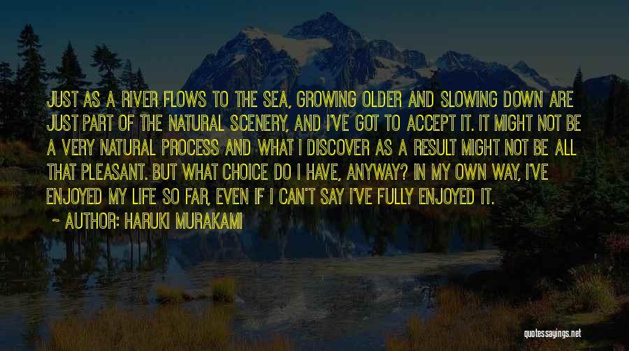 Pleasant Life Quotes By Haruki Murakami