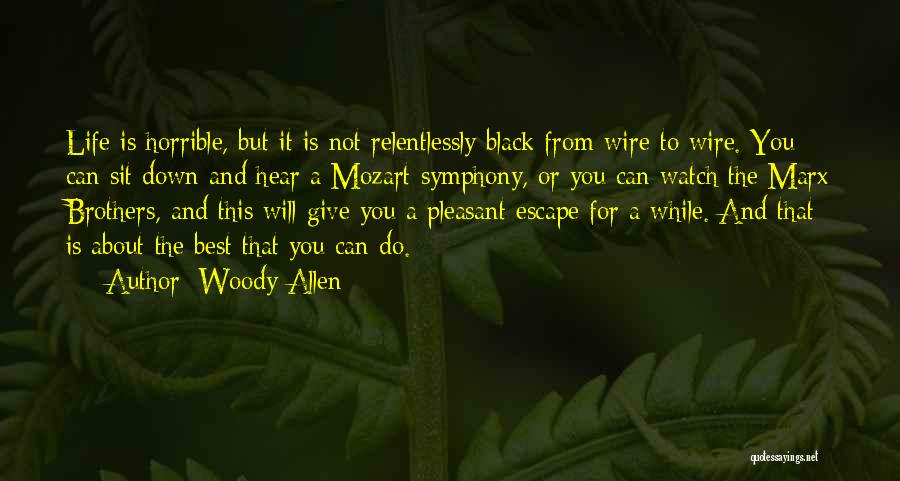 Pleasant Life Quotes By Woody Allen
