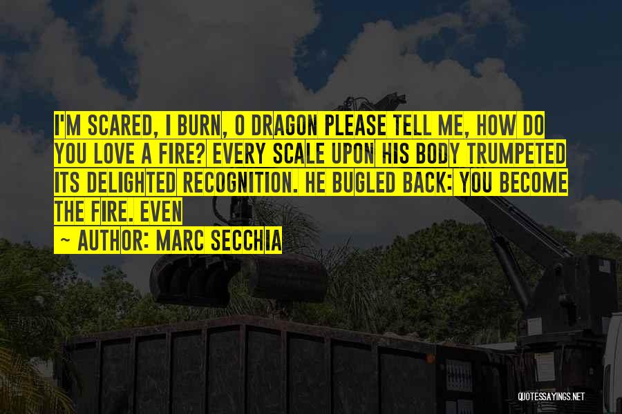 Please Love Me Back Quotes By Marc Secchia