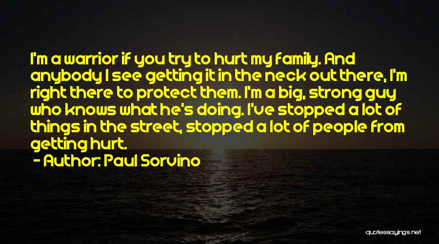 Please Protect My Family Quotes By Paul Sorvino