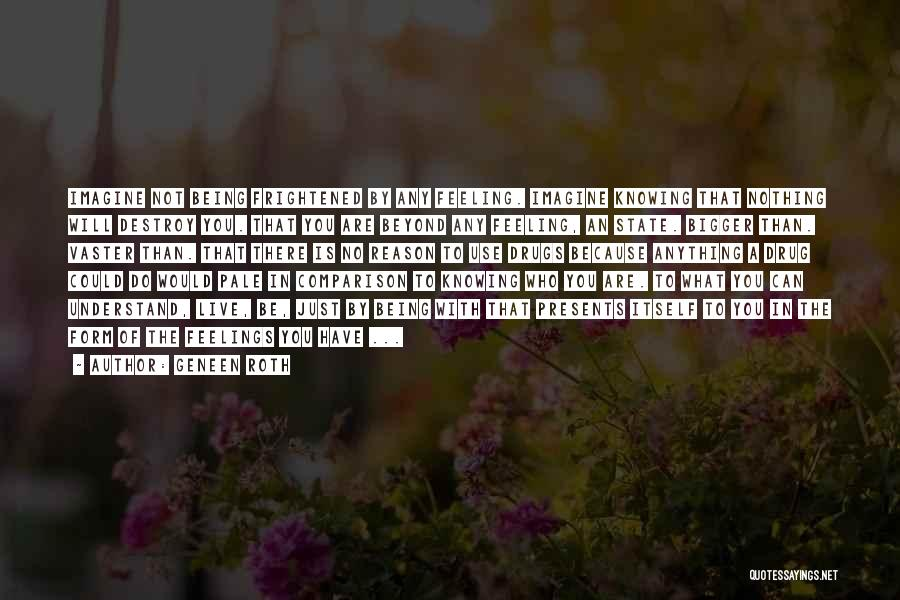 Please Understand My Feelings Quotes By Geneen Roth