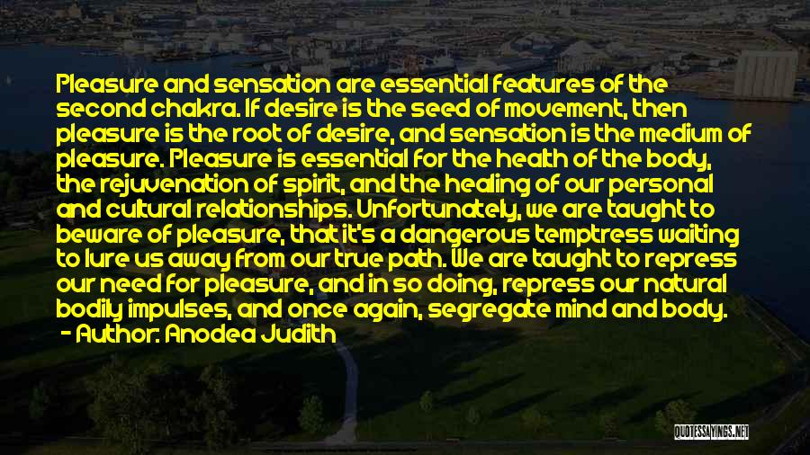 Pleasure And Desire Quotes By Anodea Judith