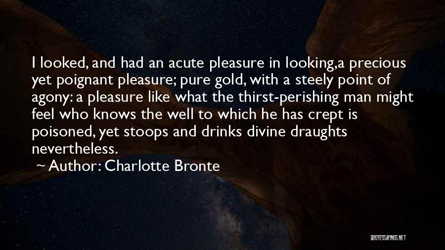 Pleasure And Desire Quotes By Charlotte Bronte