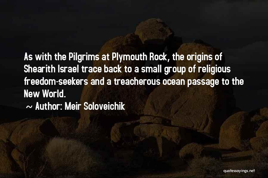 Plymouth Rock Quotes By Meir Soloveichik