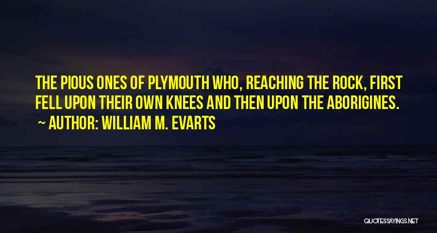 Plymouth Rock Quotes By William M. Evarts
