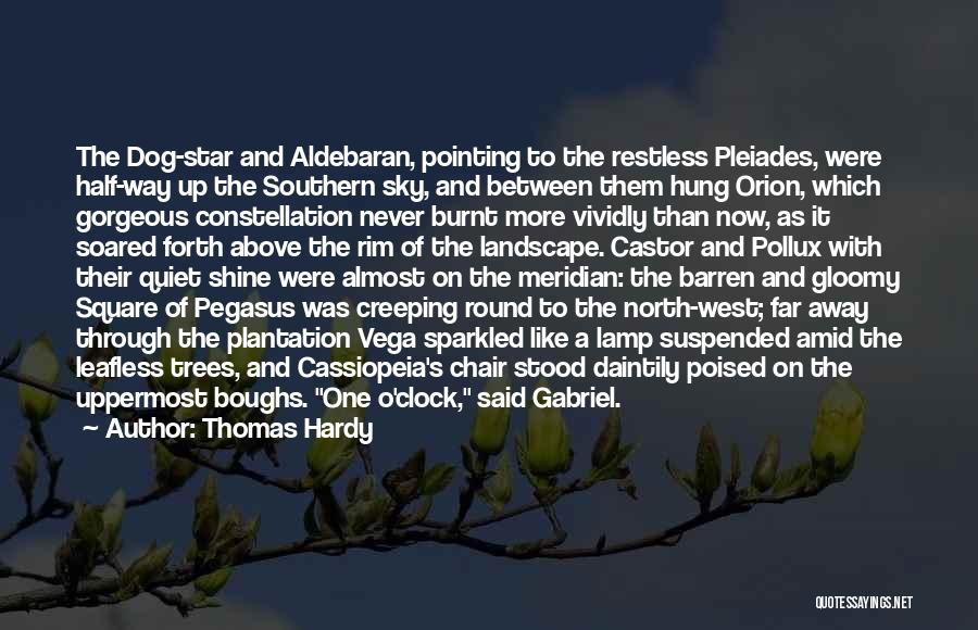 Pointing The Way Quotes By Thomas Hardy