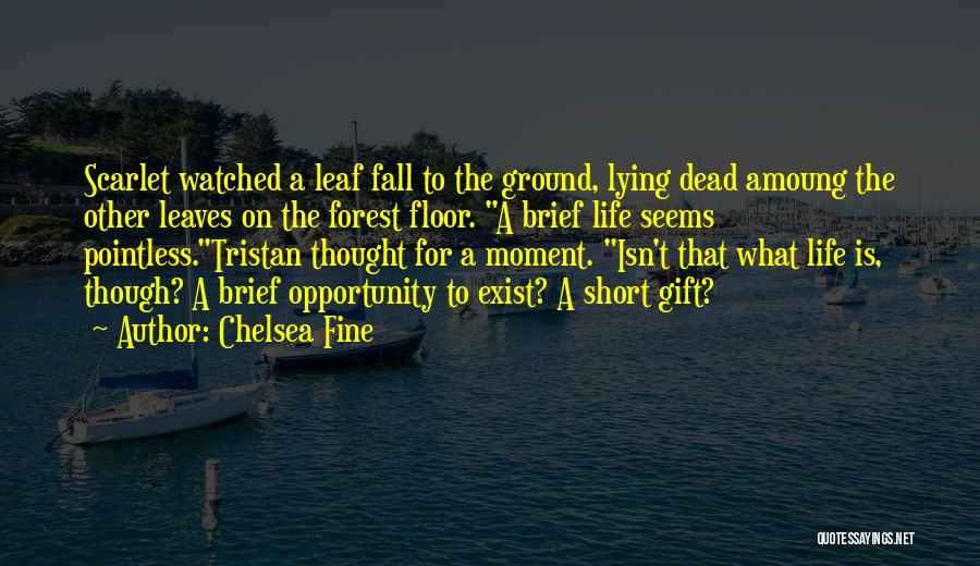 Pointless Life Quotes By Chelsea Fine