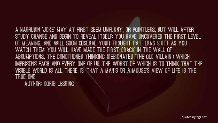 Pointless Life Quotes By Doris Lessing
