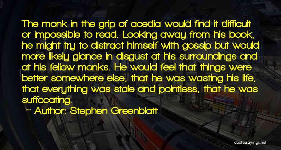 Pointless Life Quotes By Stephen Greenblatt