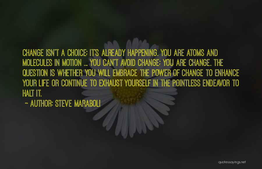 Pointless Life Quotes By Steve Maraboli