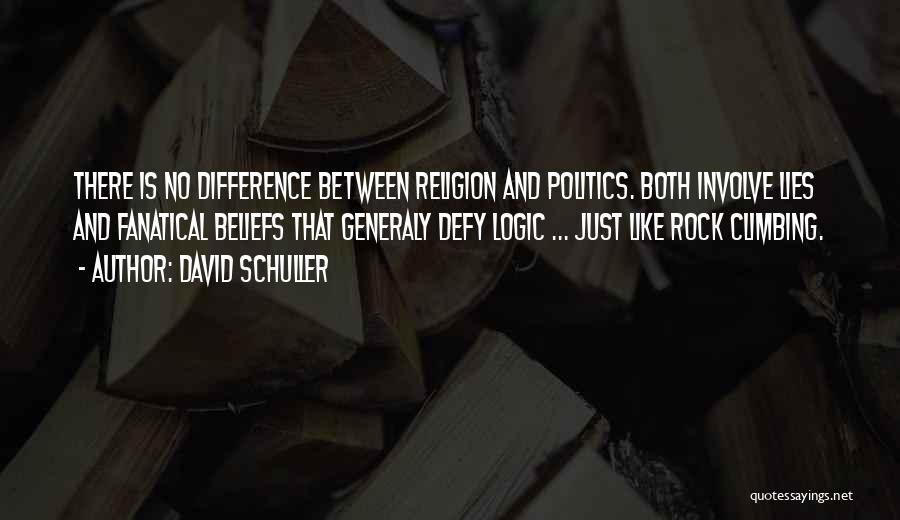 Politics And Lies Quotes By David Schuller