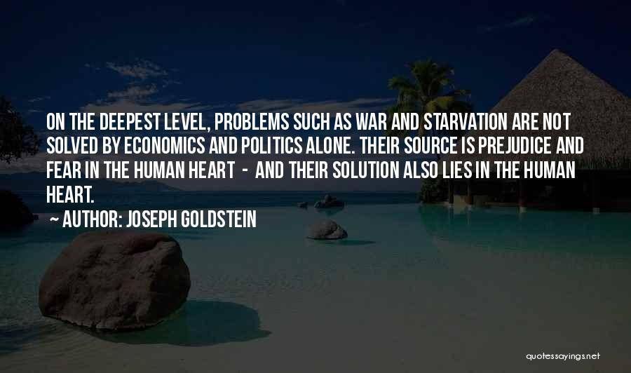 Politics And Lies Quotes By Joseph Goldstein