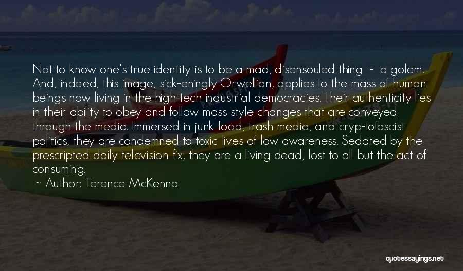 Politics And Lies Quotes By Terence McKenna