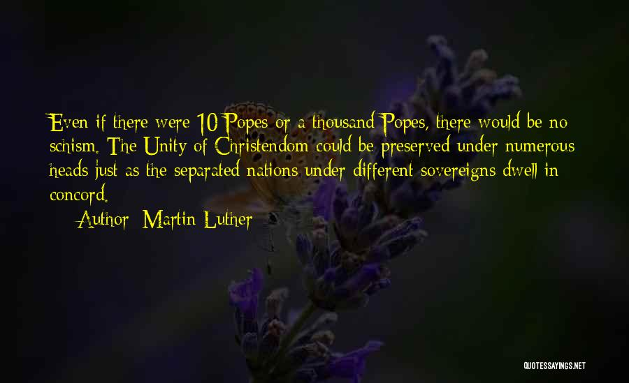 Popes Quotes By Martin Luther