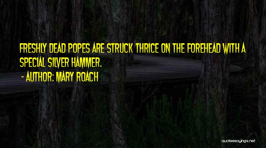Popes Quotes By Mary Roach